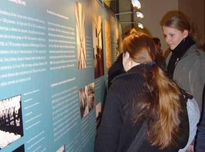 Besucher und Besucherinnen schauen sich eine Ausstellung in der Wandelhalle an.