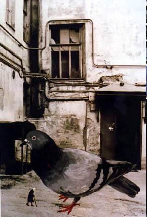 Fotomontage einer Taube, so groß wie ein Mensch neben einer alten Frau, so klein wie ein Vogel, vor einem kaputten Haus.