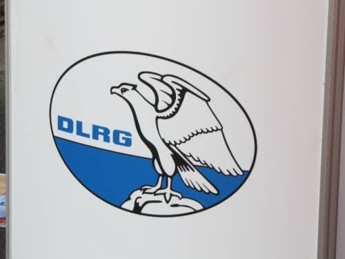 Abbildung von einem Logo des DLRG. Ein Greifvogel auf einem Felsen.
