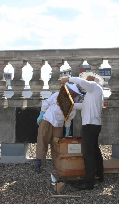 Imker auf dem Dach des Abgeordnetenhaus Berlin halten einen Bienenstock in die Höhe